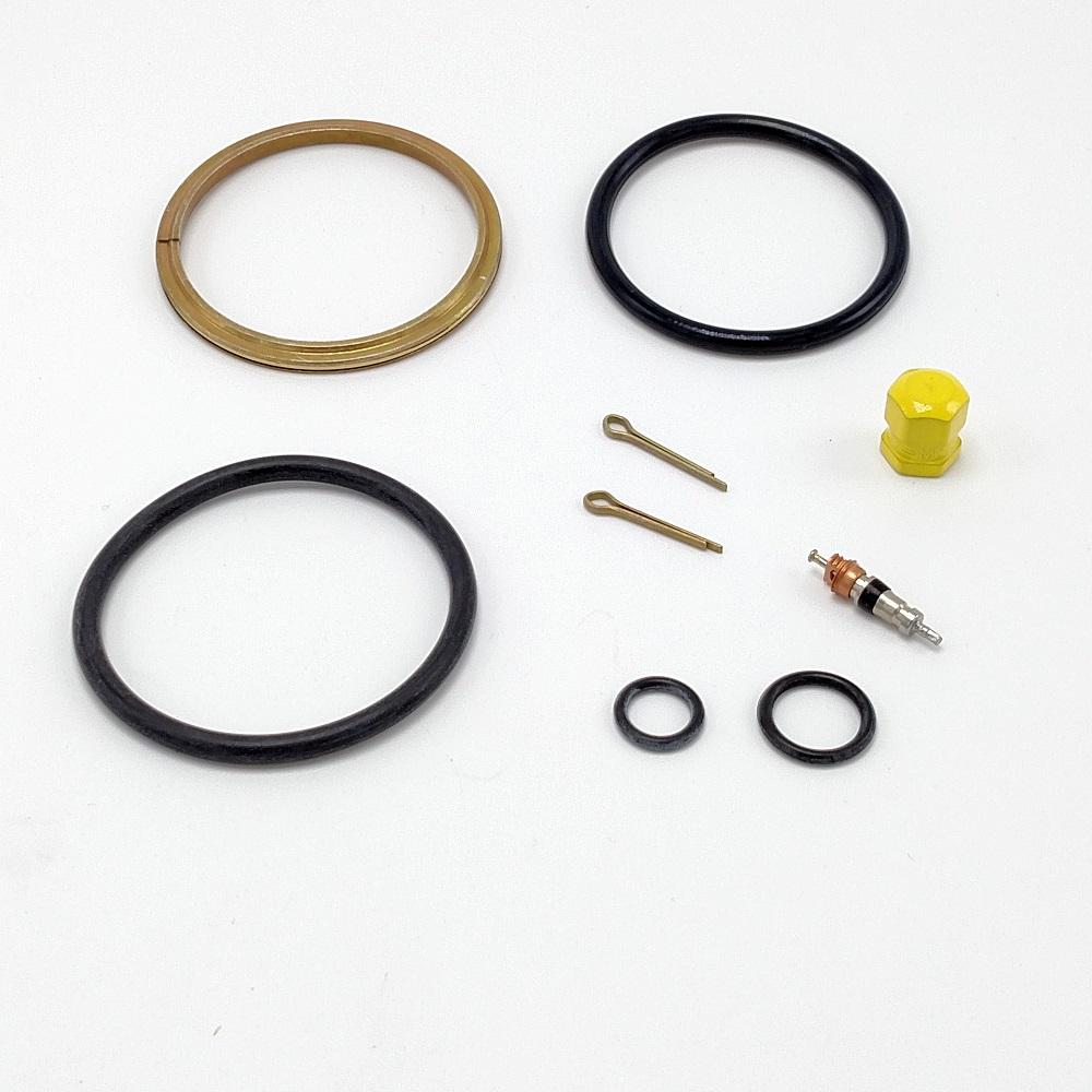 Beech 33 nose strut service kit